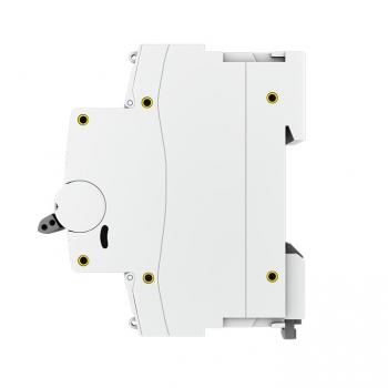 Автоматический выключатель 2P  10А (D) 10kA ВА 47-100 EKF PROxima