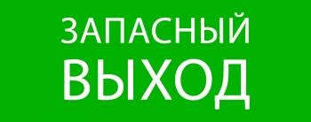 "Пиктограмма ""Запасный выход"" 240х95мм (для SAFEWAY-10) EKF"